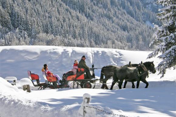 Hotel Vierjahreszeiten - Winter - Flachau - Pferdeschlittenfahrten