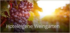 Hoteleigene Weingärten